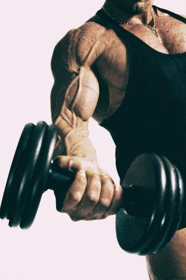 筋肥大確実!?上腕二頭筋の構造から理解するバルクアップトレーニング法